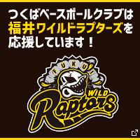 福井ワイルドラプターズ応援